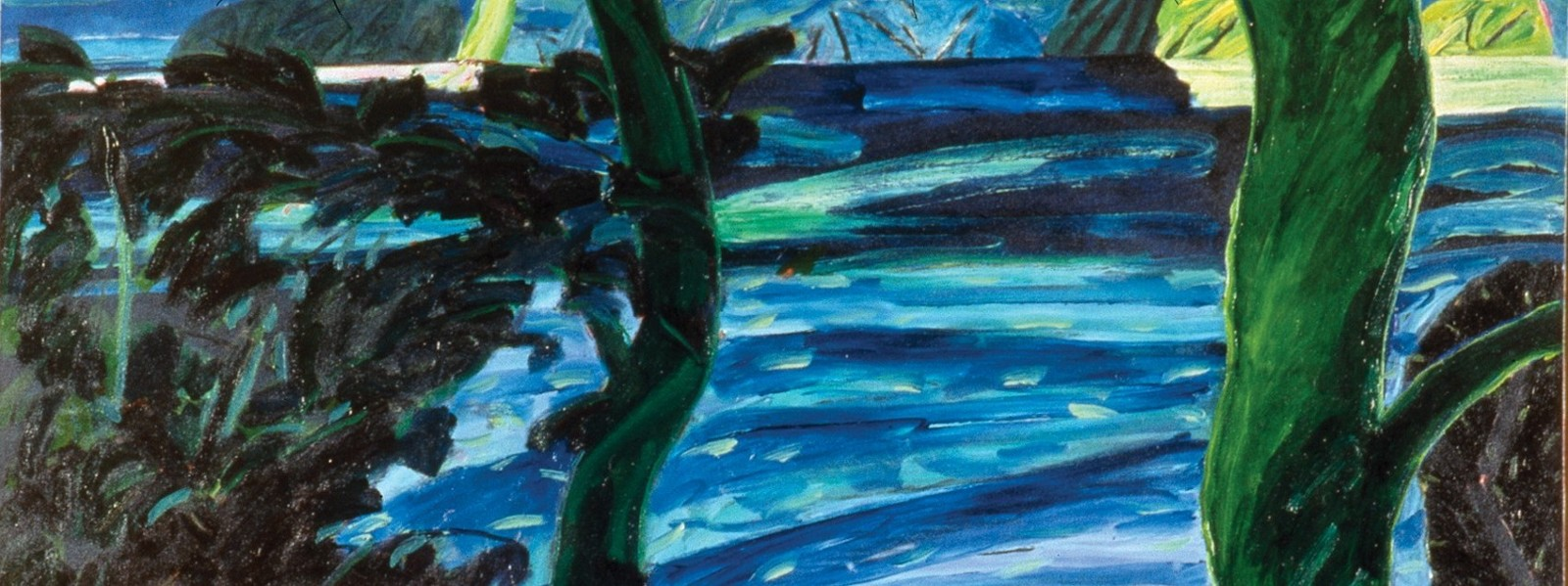 1988 The River Boundary  (Lough Hyne), Oil on canvas, Collection Crawford Art Gallery. Detail